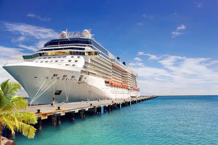 Luksusowy statek wycieczkowy w porcie w słoneczny dzień