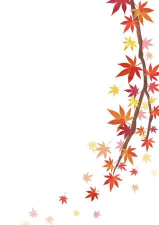 Autumn Backgrounds. Red leaves, maple branches. Decoration on the right. White background (vertically long)