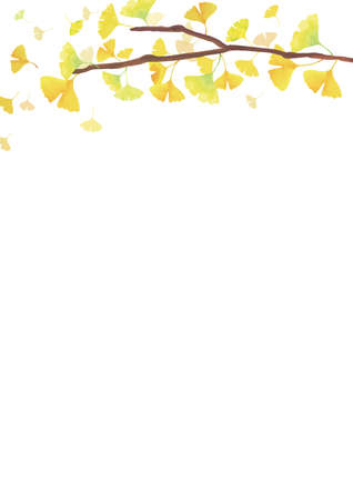 Autumn Backgrounds. Ginkgo branches. Decoration at the top. White background (vertically long) Vektorové ilustrace