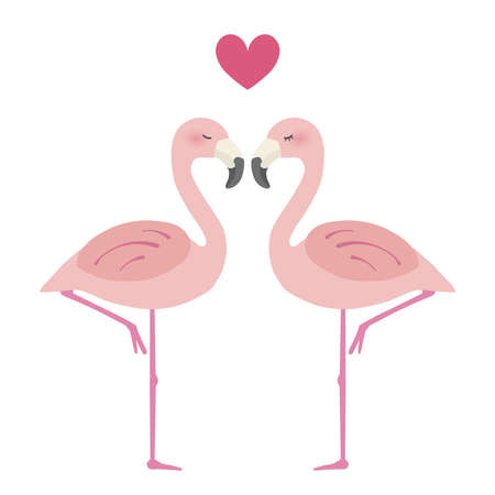 Two flamingos snuggle up to each other and a heart symbol appears. Love illustration