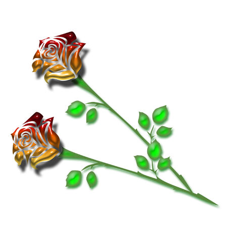 long stem: two very pretty and colorful long stem roses Illustration