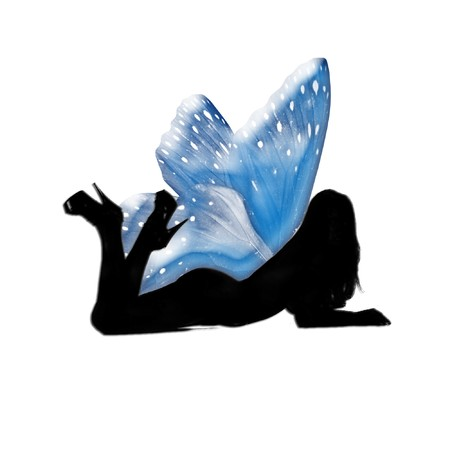 the silhouette of a fairy with pretty wings