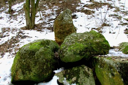 Large rocks in the Park. Winter in the land of snow.In the snow standing stones.They are covered with green moss. These stones are in the Park and perfectly complement the landscape.