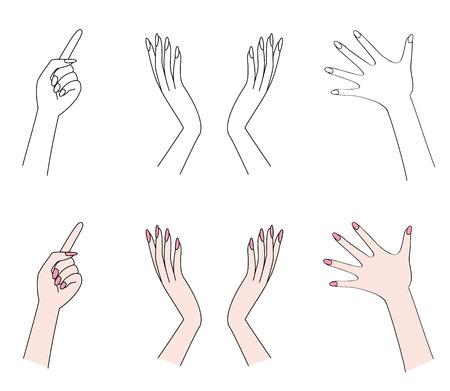 forearm: Hand