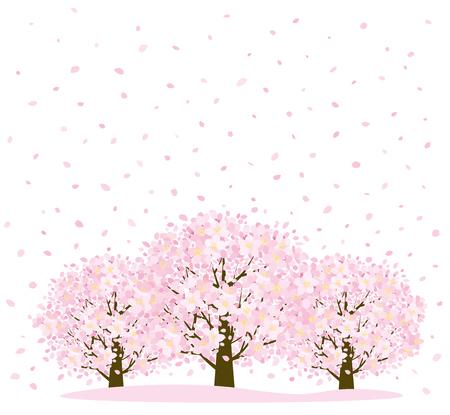 petal: Cherry trees and petal Illustration
