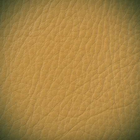 brown leather: texture of brown leather