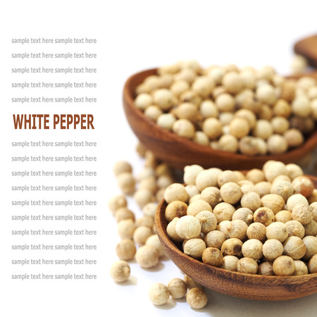 white pepper: white pepper seeds in wooden spoon isolated on white background