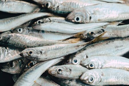 Świeże ryby na rynku na ciemnym tle