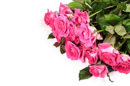 Pink rose bouquet isolated on white background