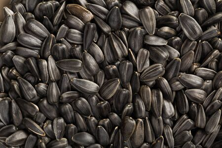 Black sunflower seeds. For texture or background Stockfoto