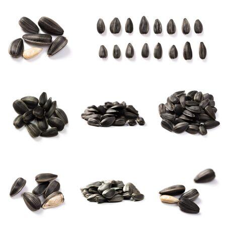 Set of Organic Sunflower seeds isolated on white background Stockfoto