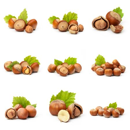 Hazelnuts with leaves isolated on a white background Archivio Fotografico