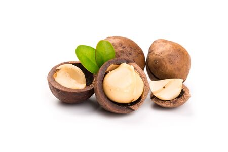 Inshell macadamia nuts with leaves isolated on white background.