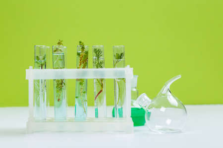 Various laboratory glass products and natural ingredients on white table in cosmetic laboratory