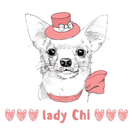 white Chihuahua with pink hat hand drawn portrait Stock Photo