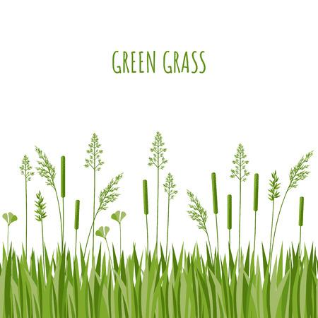 Simple green grass vector illustration. Seamless grass border