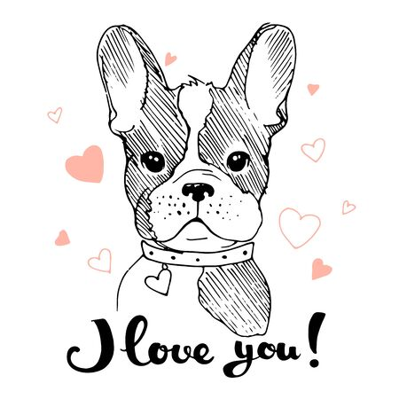Hand drawn cute dog portrait. Vector illustration. Print for t shirts, cards, cups Çizim