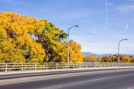 Autum leaves by the bridge over the Rio Grande River Фото со стока