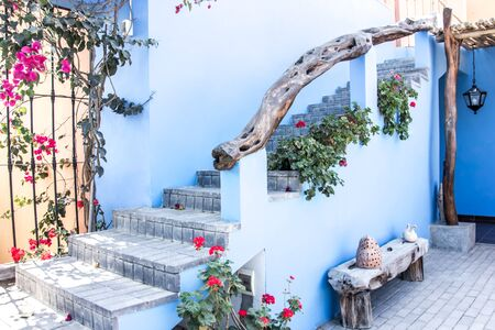 Patio in blue with red and pink flowers.