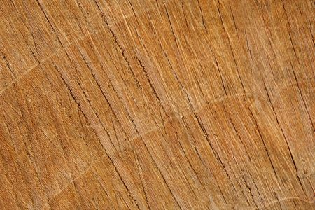 bumpy: A horizontal or vertical colour photograph of wood texture. Stock Photo