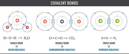 Covalent bonds. Covalent bonds including single, double, and triple bonds in Water, Carbondioxide Molecule and Nitrogen Molecule. Illustration of chemistry Covalent bonds diagram and Sharing electron.