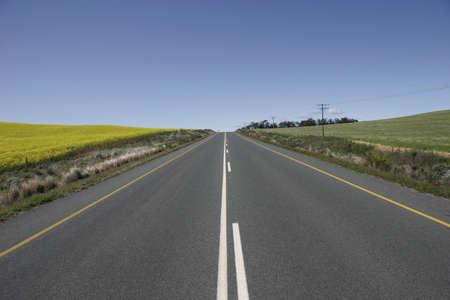 road ahead: The Road Ahead