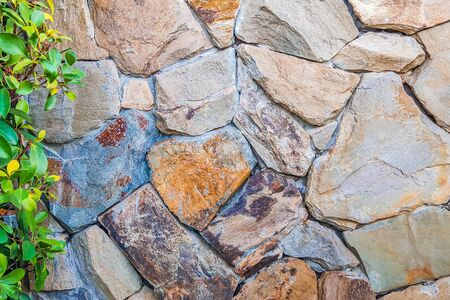 Beautiful background of closeup brown gray stone wall with green leaves on the left side. Ideal for use in the design or wallpaper