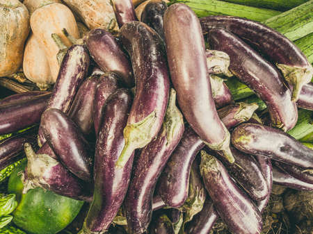 Close up heap of pile of raw purple eggplant and small green pumpkin on a local asia farmers market. Cooking and healthy food concept, vitamins for strong immunity, good nutritional value