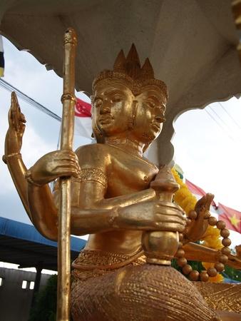 Thai brahma