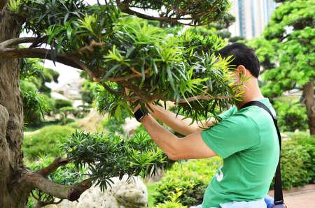 Man on green T-shirt hidden his face in bush Stock Photo