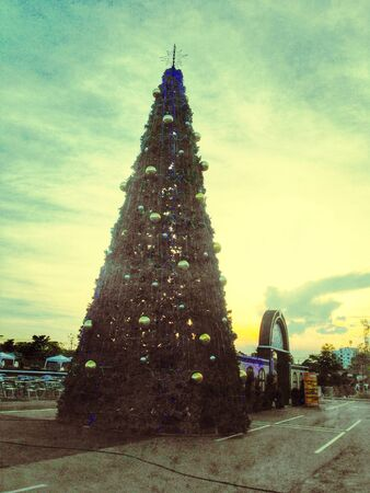 Christmas tree in evening background