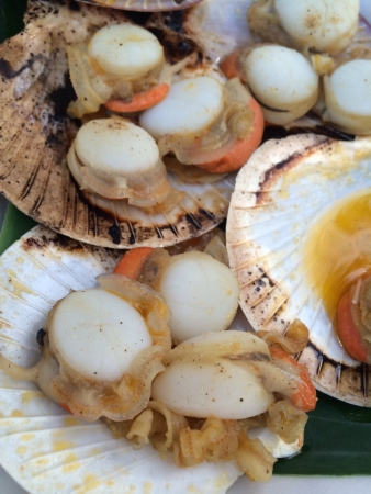 Grilled shells