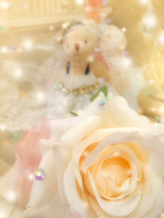 bedeck: sweet dreamy and soft focus background , blooming of  yellow beige rose