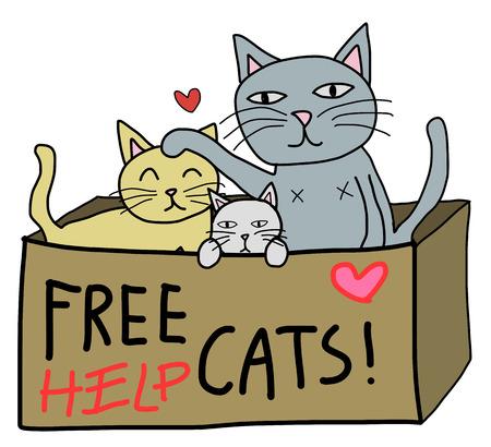 cartoon free hand style , cat in donate box
