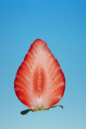 Half strawberry isolated on colour background Stock Photo