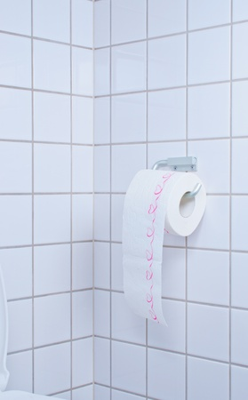 Toilet paper on a holder in rest room on a wall Stock Photo - 12012431