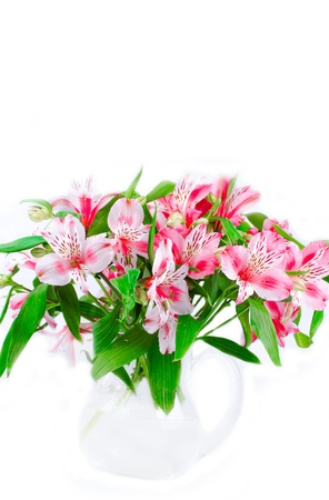 Pink wild orchids in glass vase photo
