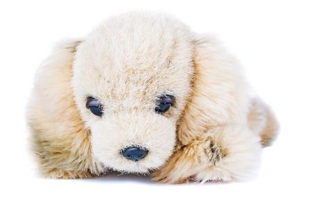 snugly: Soft plush toy dog isolated