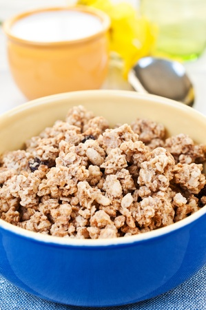 Breakfast cereal in bowl close up Stock Photo - 13724553