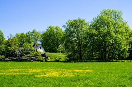 White house on the green meadow. Island Hovedoya Oslo, Norway Stock Photo - 13884497