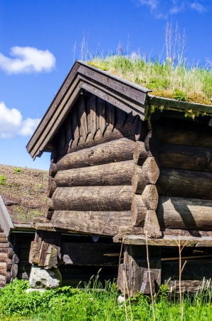 Norwegian typical house with  grass roof photo