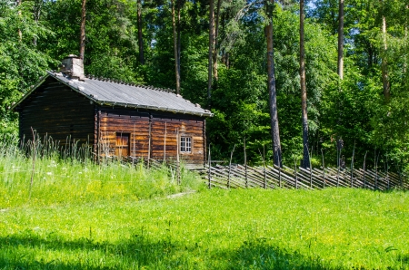 Log cabin surrounded by the forest at Norway photo