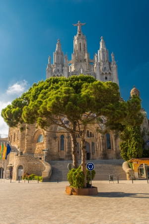 View on tree with the cathedral in background in Barcelona Spain, Templo del Sagrado Corazn de Jesus, Cim del Tibidabo photo