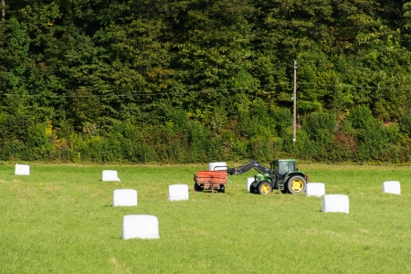 Tractor and Bales of a green crop, wrapped up in plastic for storage photo