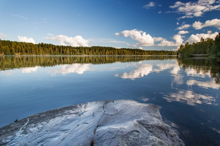 Norwegian landscape  Wild forrest and lake photo
