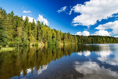 Norwegian landscape Wild forrest and lake Imagens