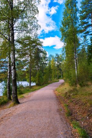Road in forest near lake on bright cloudy day Stock Photo - 16477623