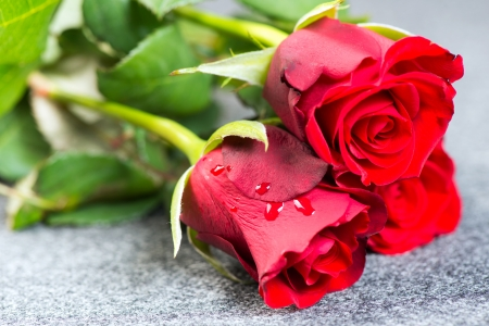 Red roses on a grey cloth