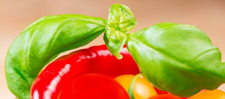 basil leafs with cherry tomatoes and chili pepper close up Stock Photo - 18052500