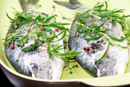 dorade: Two fresh raw Dorada fish with fresh rosemary herb and peppers on ceramic plate ready to start cooking